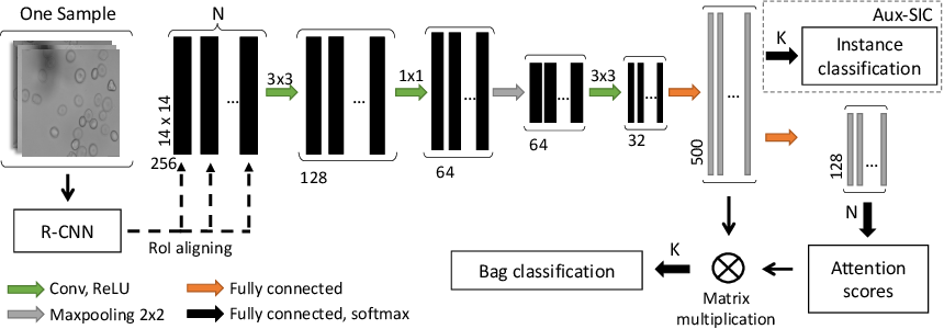 Figure 3 for Attention based Multiple Instance Learning for Classification of Blood Cell Disorders