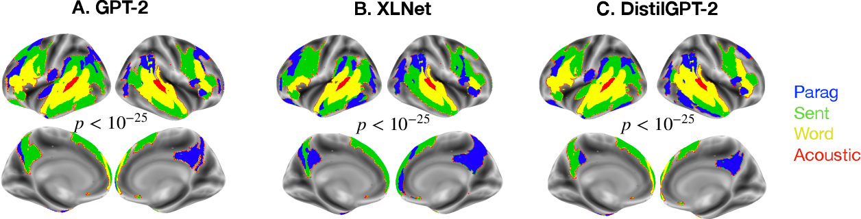Figure 3 for Model-based analysis of brain activity reveals the hierarchy of language in 305 subjects
