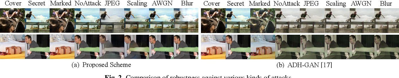 Figure 3 for Hiding Images into Images with Real-world Robustness