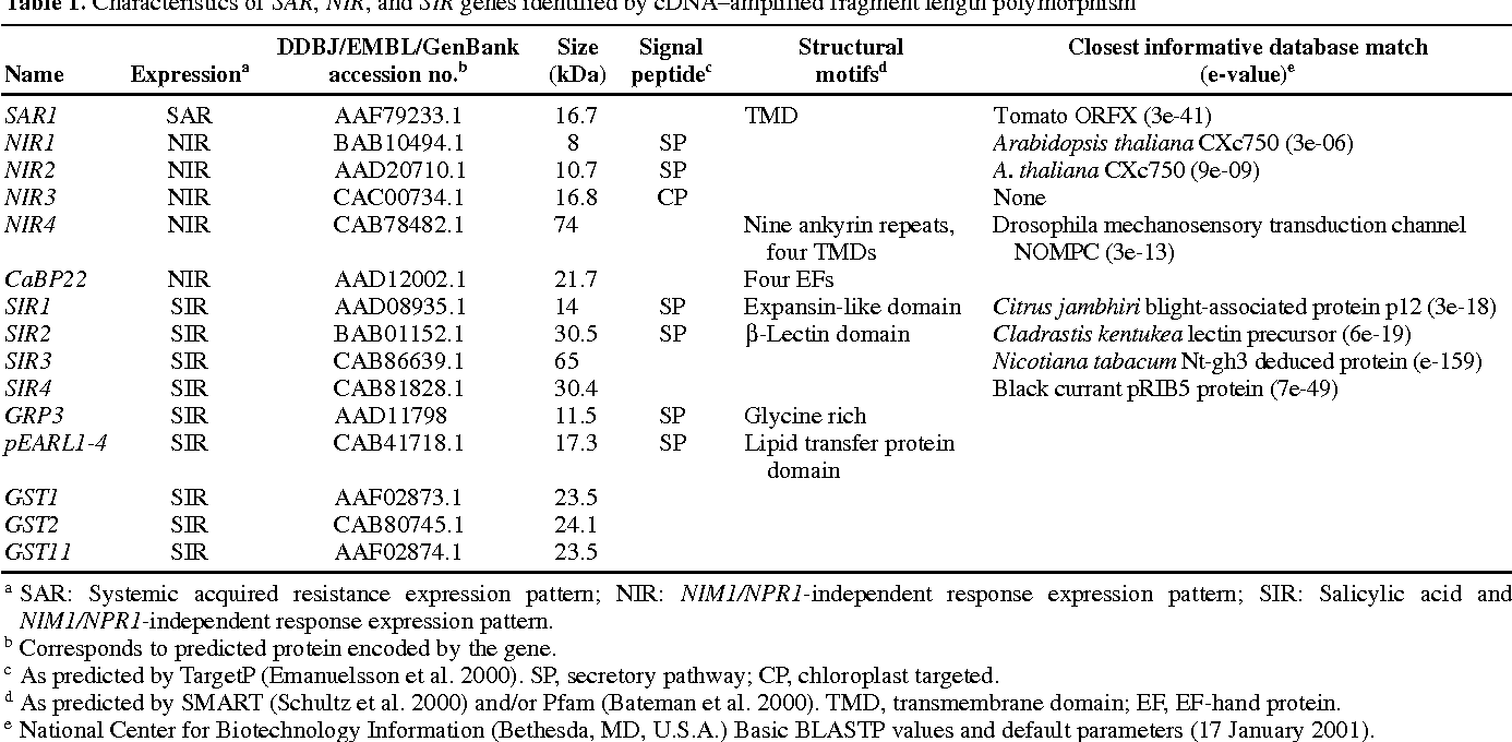 Table 1. Characteristics of SAR, NIR, and SIR genes identified by cDNA–amplified fragment length polymorphism