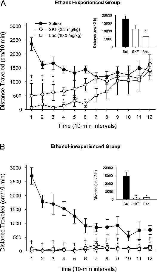 Fig. 3 A Mean (€SEM) distance traveled in centimeters in 10-min intervals after saline, SKF 97541 and baclofen injection in the ethanol-experienced group (i.e., self-administration history) (n=5/ drug). Inset graph illustrates the total distance traveled in the 2-h session. BMean (€SEM) distance traveled in centimeters in 10-min intervals after saline, SKF 97541 and baclofen injection in the ethanol-inexperienced group (n=5/drug). Inset graph illustrates the total distance traveled in the 2-h session. †Significant difference between saline (closed circle) and 0.3 mg/kg SKF 97541 (open circle). *Significant difference between saline and 10 mg/kg baclofen (open square) (Tukey, P<0.05)