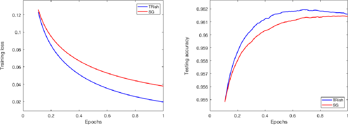 Figure 4 for A Stochastic Trust Region Algorithm Based on Careful Step Normalization