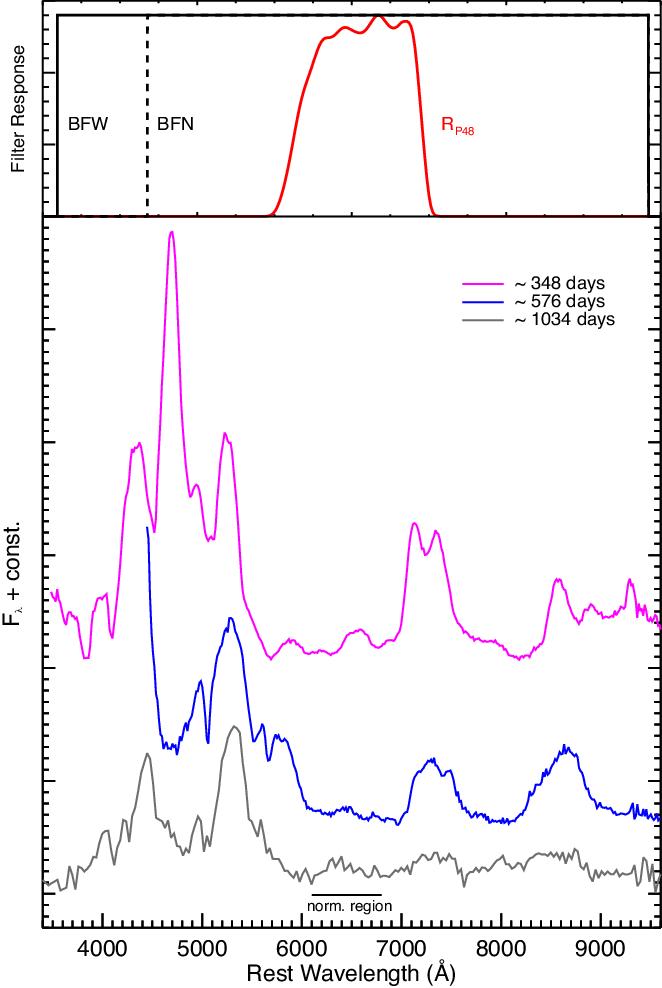PDF] The late-time light curve of the type Ia supernova SN
