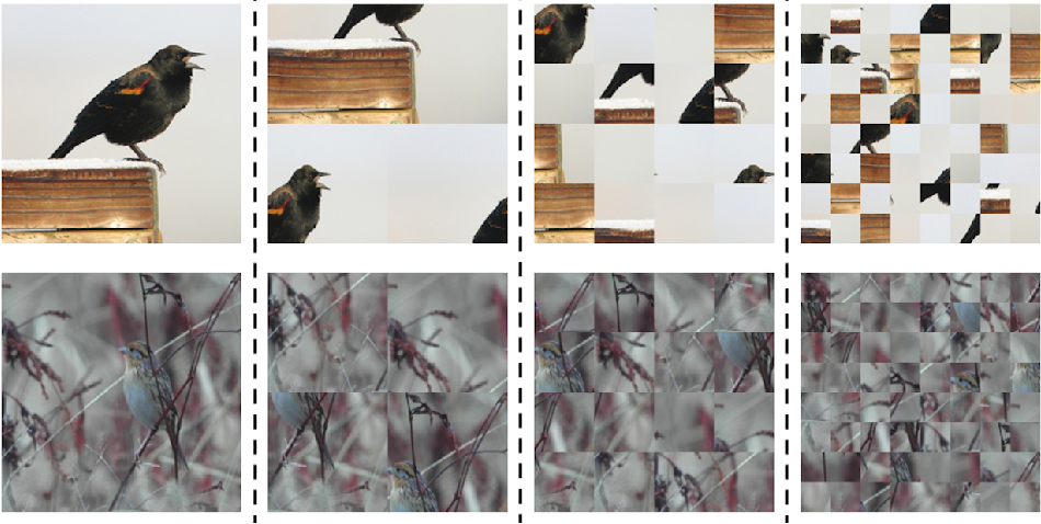 Figure 3 for Interpretable Attention Guided Network for Fine-grained Visual Classification