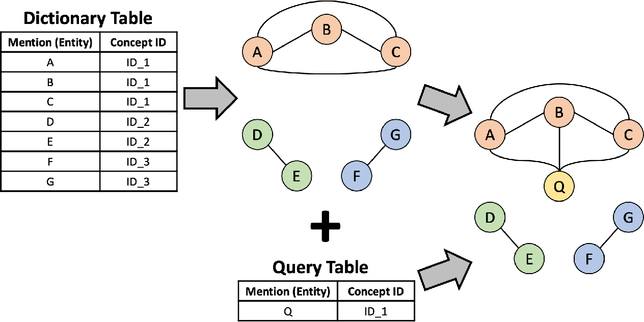Figure 1 for Named Entity Normalization Model Using Edge Weight Updating Neural Network: Assimilation Between Knowledge-Driven Graph and Data-Driven Graph
