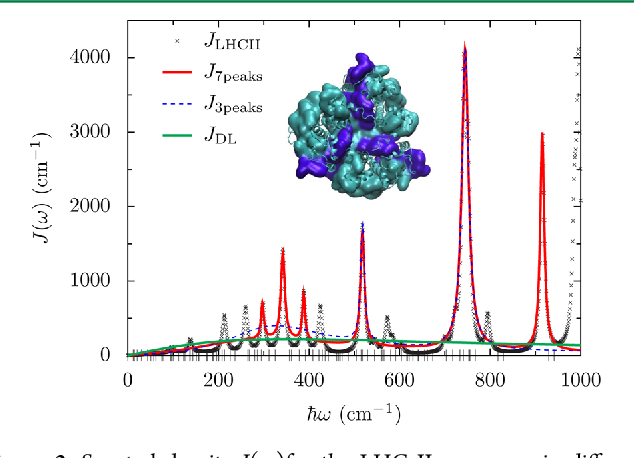 Figure 3. Spectral density J(ω)for the LHC II monomer in different parametrizations. For the calculations J3peaks with λ = {161, 16, 48} cm−1, ν−1 = {40, 1000, 600} fs, Ω = {300, 518, 745} cm−1, J7peaks with λ = {130, 6, 18, 6, 16, 48, 17} cm−1, ν−1 = {30, 1400, 1000, 1400, 1000, 600, 1000} fs, Ω = {240, 297, 342, 388, 518, 745, 915} cm−1 and JDL with λ = 220 cm−1, ν−1 = 15 fs, Ω = 0 are used. JRG, JRR are parametrizations based on the fluorescence line-narrowing data described in the text. Dashes on the horizontal axis mark the energy difference ΔEij of the exciton eigenstates of the LHC II monomer. The inset shows the trimeric assembly of LHC II.22