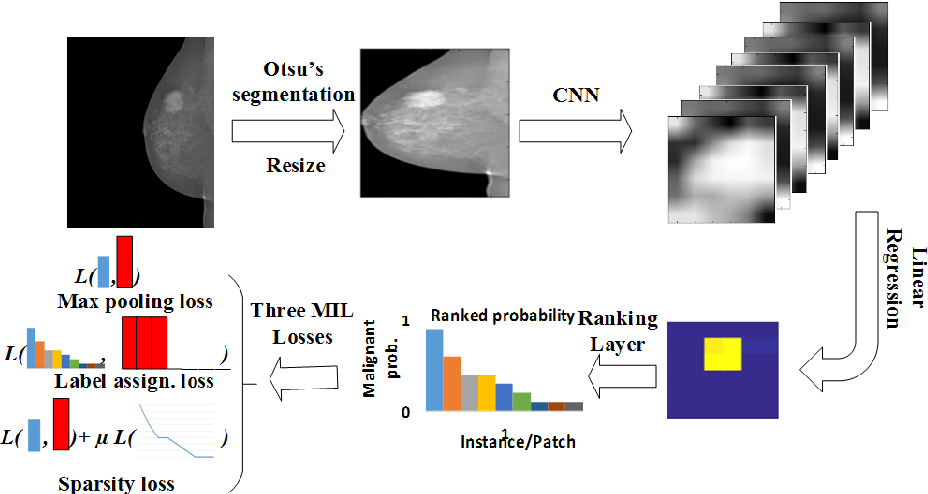 Figure 1 for Deep Multi-instance Networks with Sparse Label Assignment for Whole Mammogram Classification
