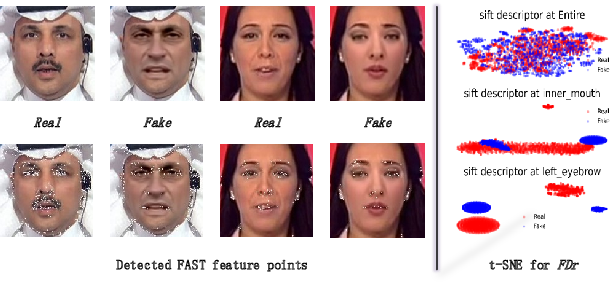 Figure 1 for FFR_FD: Effective and Fast Detection of DeepFakes Based on Feature Point Defects