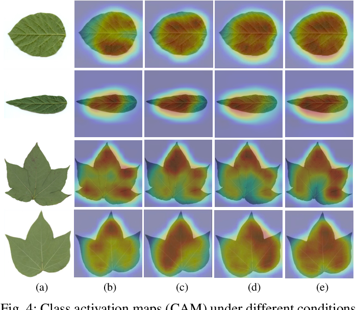 Figure 4 for Mask-Guided Feature Extraction and Augmentation for Ultra-Fine-Grained Visual Categorization