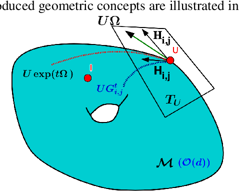Figure 1 for Stochastic Flows and Geometric Optimization on the Orthogonal Group