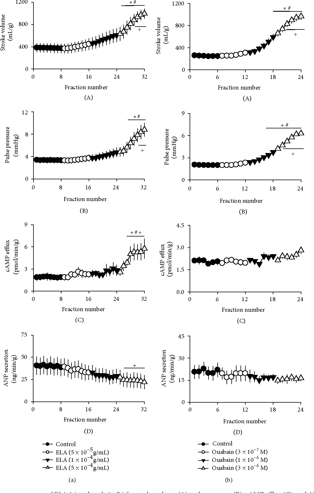 Figure 1: Dose-response curves of ELA (a) and ouabain (b) for stroke volume (A), pulse pressure (B), cAMP efflux (C), and ANP secretion (D) in beating rabbit atria. Values shown are mean ± SE (𝑛 = 4); +𝑃 < 0.05 versus control; ∗∗𝑃 < 0.01 versus ELA (5 × 10−5 g/mL) or ouabain (3 × 10−7 M); ###𝑃 < 0.001 versus ELA (1 × 10−4 g/mL) or ouabain (1 × 10−6 M) (compared with values for the last 3 fractions of control).