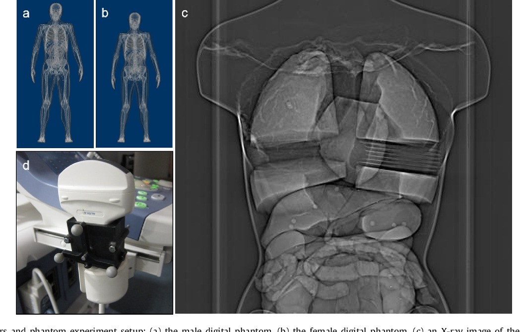 Figure 2 for A Real-time and Registration-free Framework for Dynamic Shape Instantiation