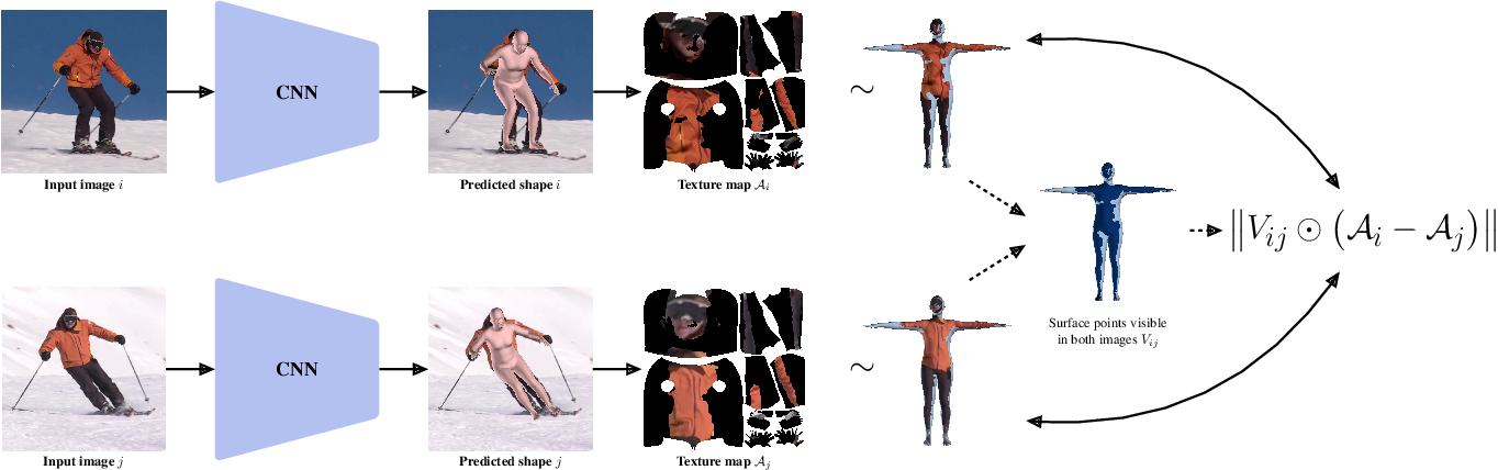Figure 3 for TexturePose: Supervising Human Mesh Estimation with Texture Consistency