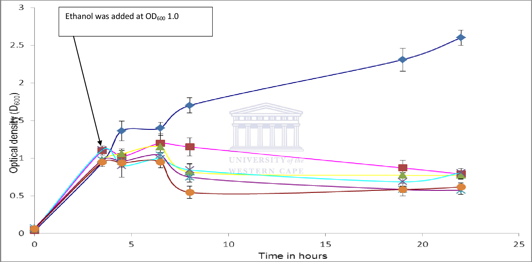 Figure 4.4: Growth of unchallenged and ethanol challenged E. coli Rosetta pLySs in 2 x TY. Ethanol (4, 6, 8, 10% v/v) was added when cultures reached an OD600 of 1.0. The survival of the cultures was monitored following the addition of ethanol.