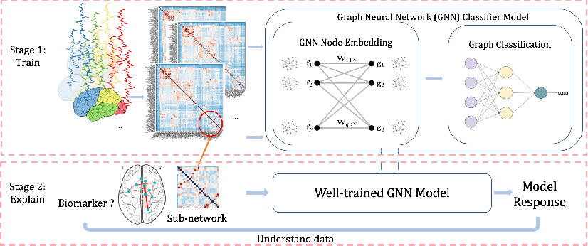 Figure 1 for Graph Neural Network for Interpreting Task-fMRI Biomarkers
