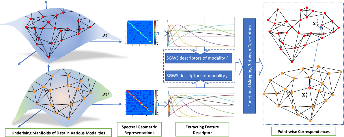 Figure 3 for Cross-Modal and Multimodal Data Analysis Based on Functional Mapping of Spectral Descriptors and Manifold Regularization