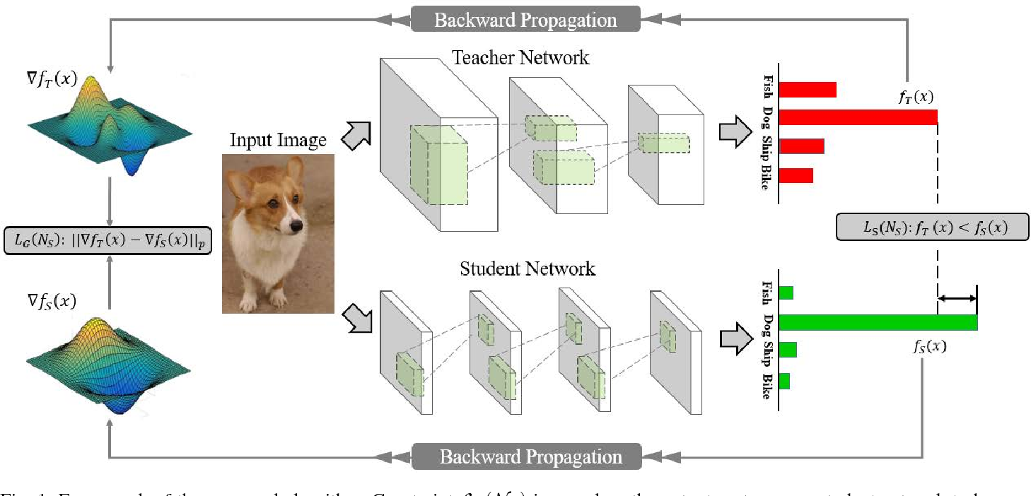 Figure 1 for Robust Student Network Learning