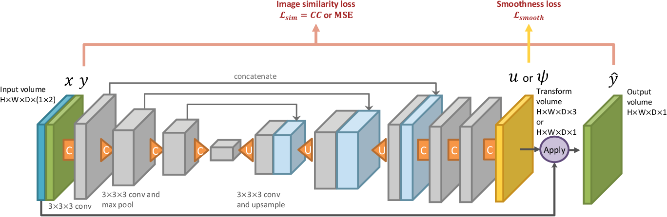 Figure 4 for Data augmentation using learned transformations for one-shot medical image segmentation