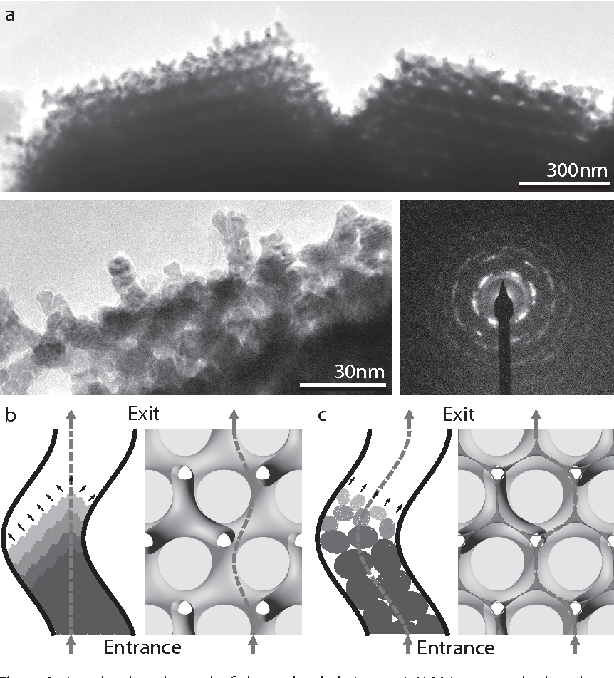Figure 4 from Labyrinth-induced faceted electrochemical growth ...