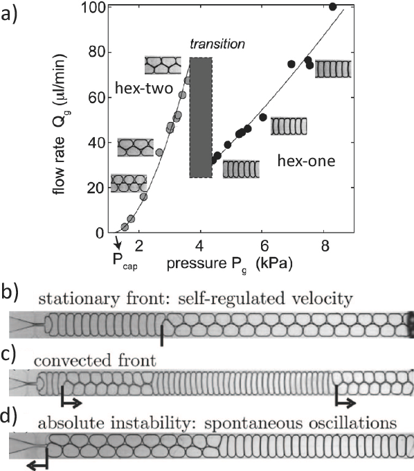 Figure 16 from Bubbles and foams in microfluidics