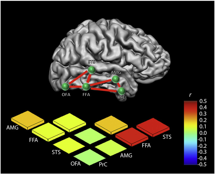 Figure 2 from Resting-state fMRI reveals functional