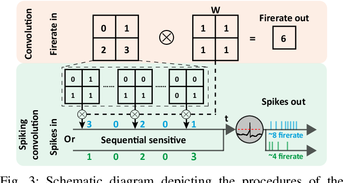 Figure 3 for Tuning Convolutional Spiking Neural Network with Biologically-plausible Reward Propagation