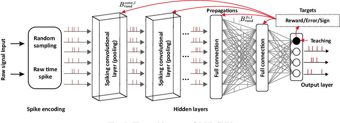 Figure 4 for Tuning Convolutional Spiking Neural Network with Biologically-plausible Reward Propagation