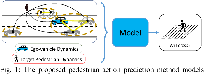 Figure 1 for Graph-SIM: A Graph-based Spatiotemporal Interaction Modelling for Pedestrian Action Prediction