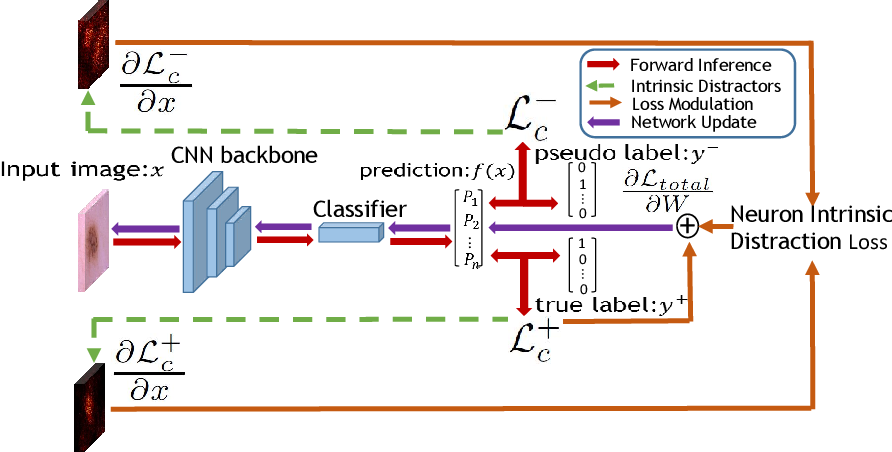 Figure 3 for Distractor-Aware Neuron Intrinsic Learning for Generic 2D Medical Image Classifications