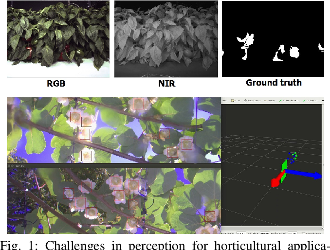 Figure 1 for An Overview of Perception Methods for Horticultural Robots: From Pollination to Harvest