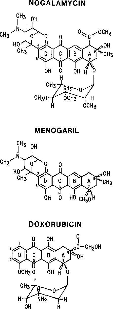 Fig. 1. Structures of nogalamycin, menogaril and doxorubicin.