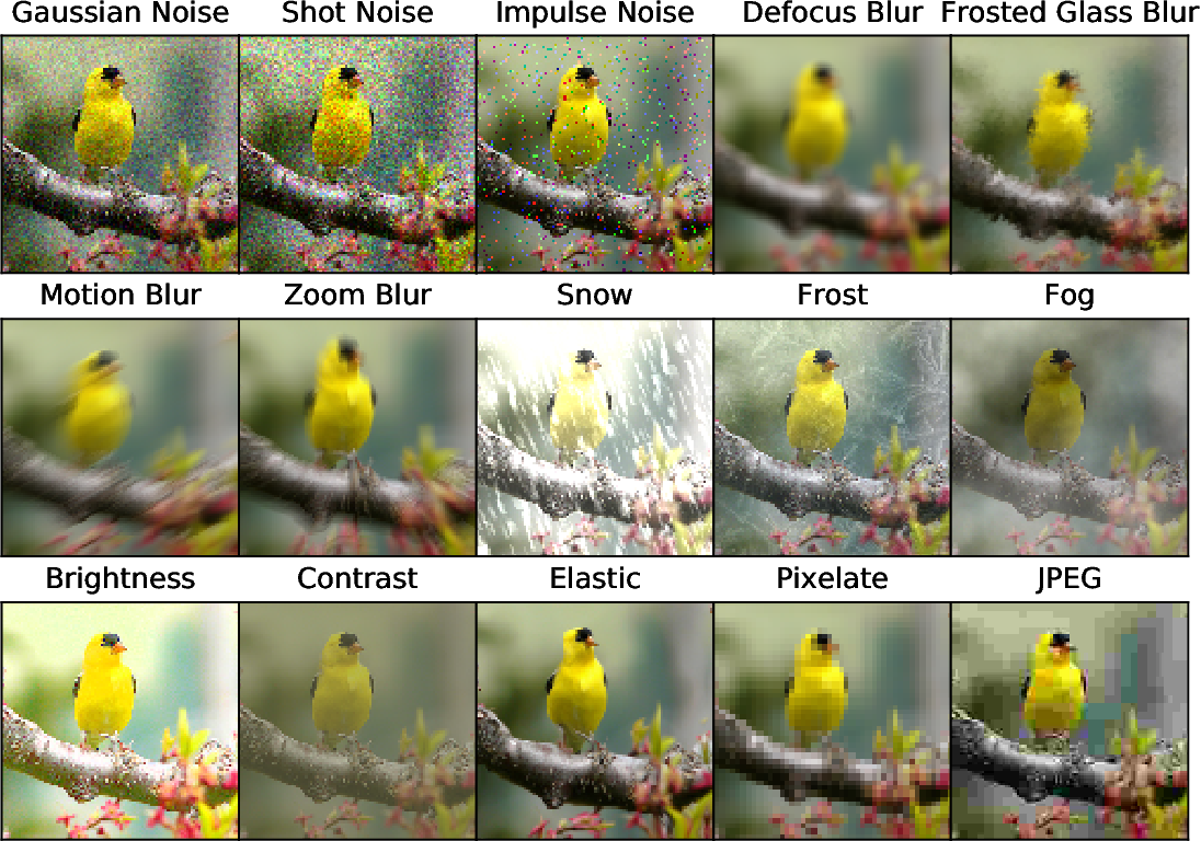 Figure 1 for Benchmarking Neural Network Robustness to Common Corruptions and Surface Variations
