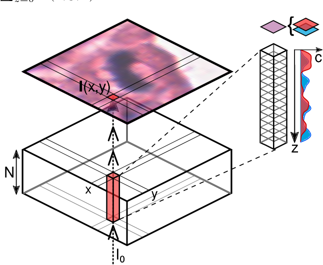 Figure 1 for Inferring a Third Spatial Dimension from 2D Histological Images