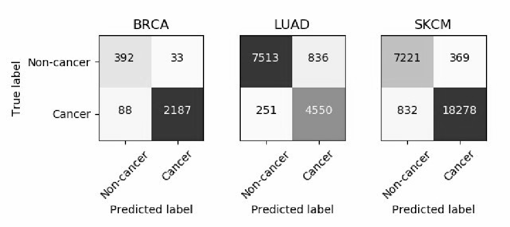 Figure 2 for Resolving challenges in deep learning-based analyses of histopathological images using explanation methods