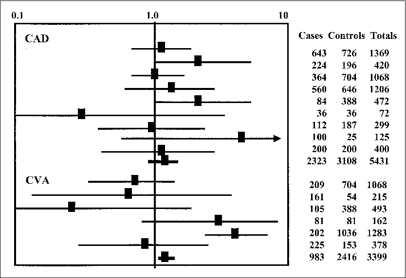 FIGURE 2. OR for CAD16–18,7,19,20,10,12,11 and stroke18,21,13,22,23,15 for factor V (G1691A and AA genotypes). The references are cited in the order they appear in the figure. Abbreviation as in Figure 1.