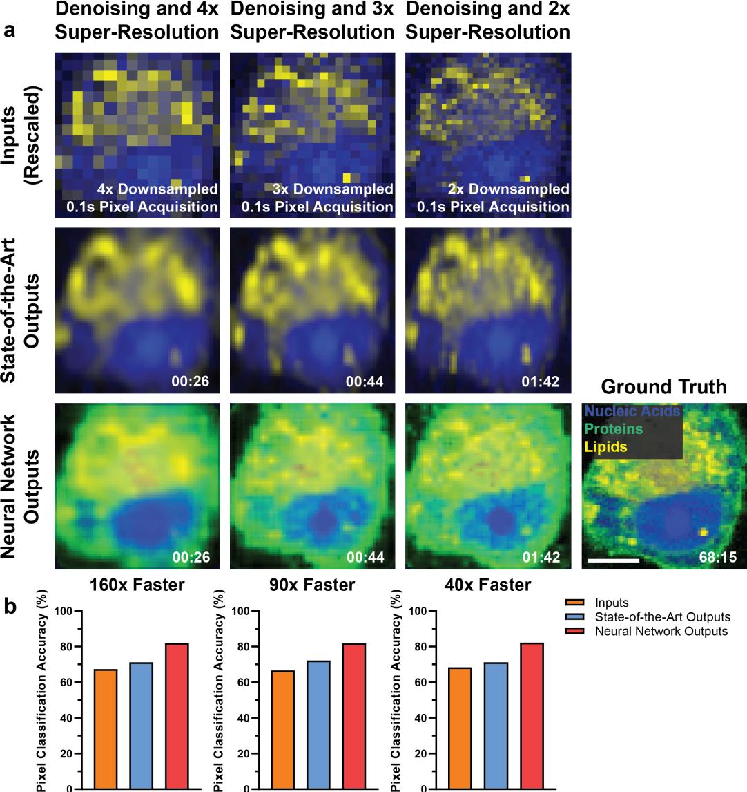 Figure 4 for High-throughput molecular imaging via deep learning enabled Raman spectroscopy