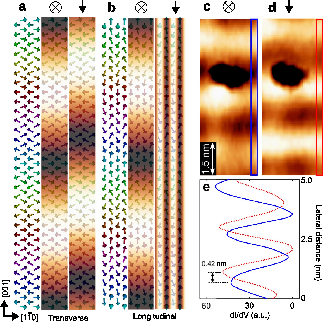 Figure 3. Simulated SP-STM images for Mn double-layer and experimental confirmation of a transverse conical spin spiral. (a,b) Schematic spin structures of a cycloidal and helical type rotation of Mn DL, respectively. Middle and right panels represent simulated spin-polarized signals with tips magnetized parallel to the out-of-plane and [001] directions, respectively. (c,d) Spin polarized dI/dV images taken with tips magnetized parallel to the out-of-plane and [001] directions, respectively. IT = 1 nA, VS = −50 mV. B⊥ = 2 T for (c) and B = 1 T for (d). (e) Blue solid and red dotted line indicate the cross-sectional profiles taken in the boxed areas in (c) and (d), respectively.