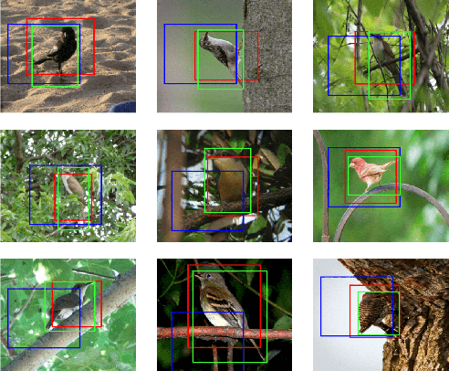 Figure 1 for Convolutional STN for Weakly Supervised Object Localization and Beyond