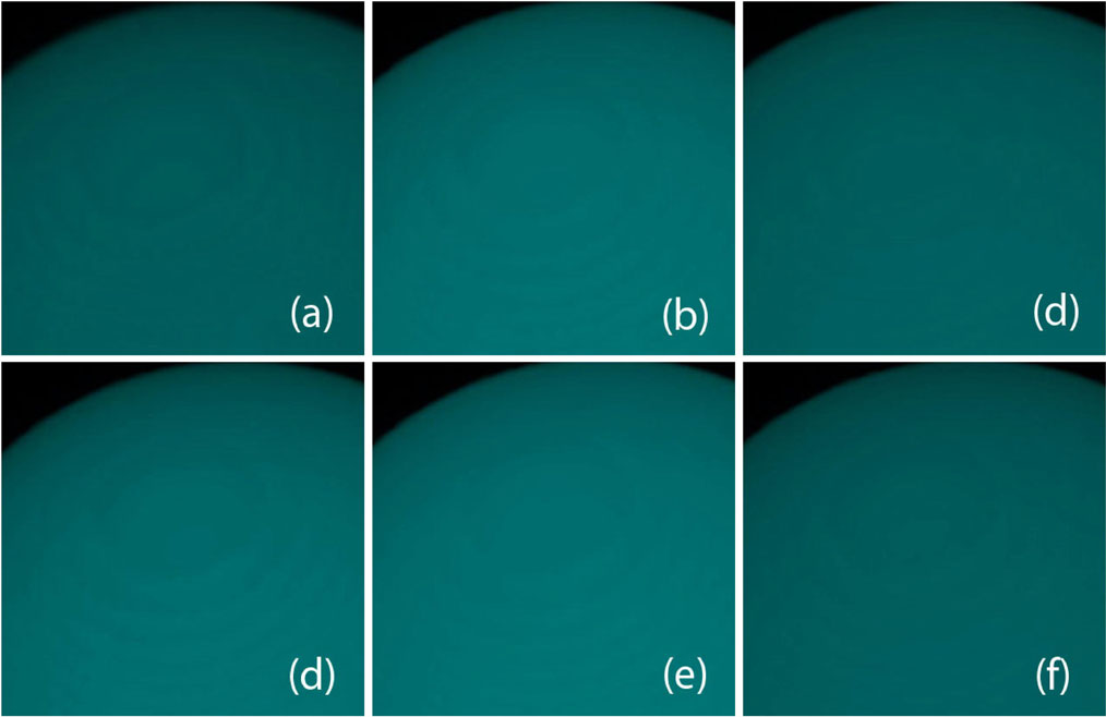 Fig. 7 The volume rendered spheres are classified with the six classification algorithms for color and opacity mapping. The algorithm index (a)–(f) is the same as in Fig. 5