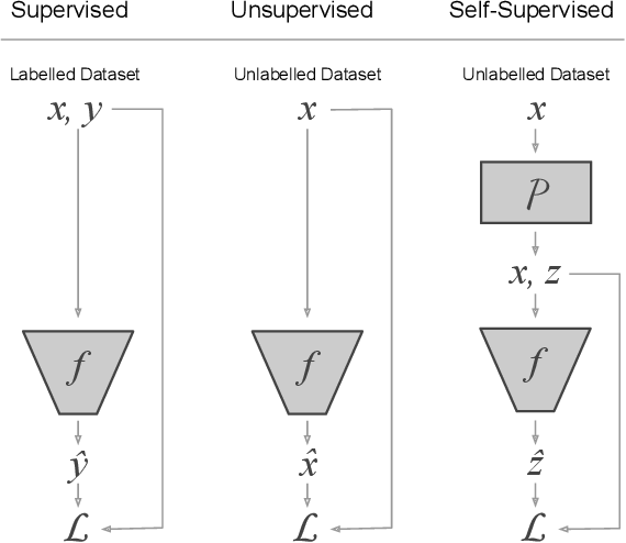 Figure 1 for Self-Supervised Representation Learning: Introduction, Advances and Challenges