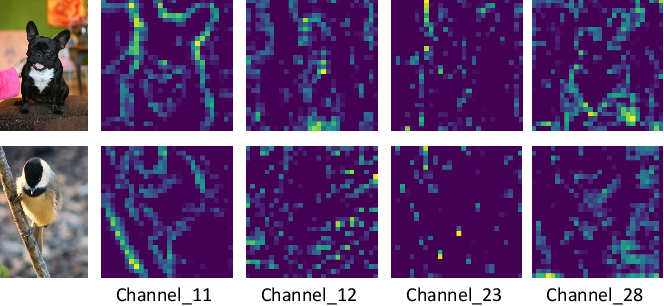 Figure 3 for BA^2M: A Batch Aware Attention Module for Image Classification