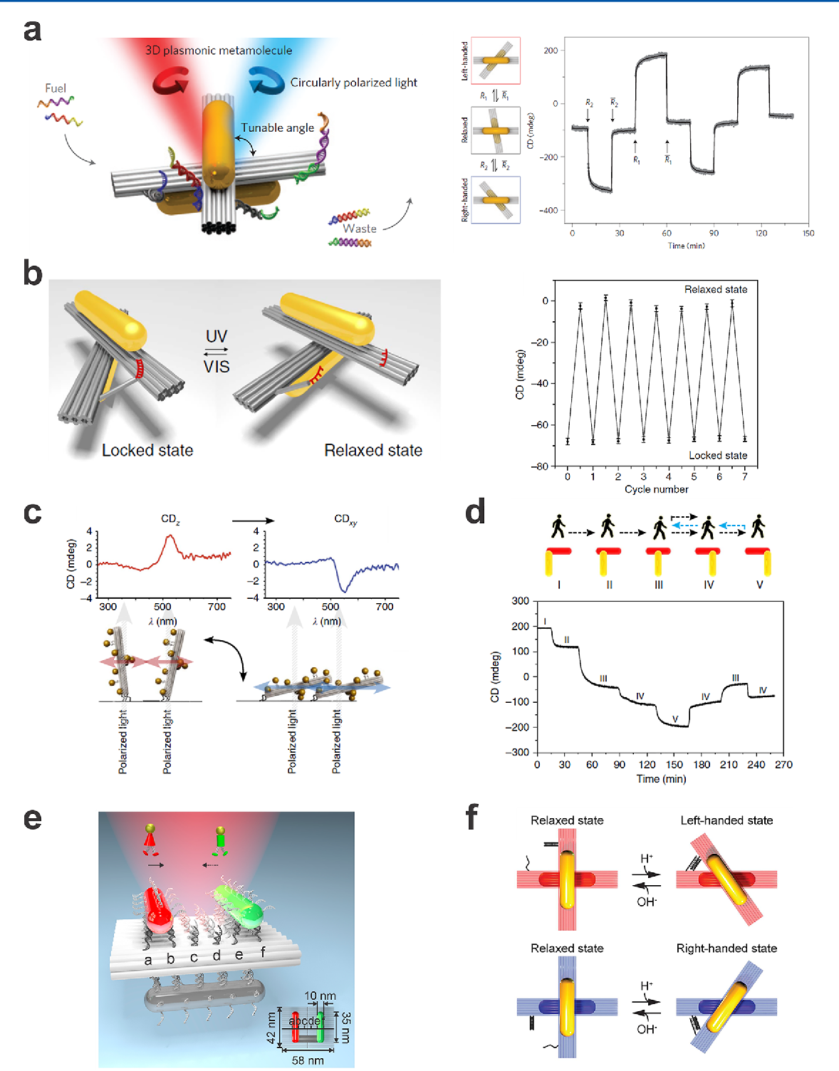 Figure 10 from DNA-Assembled Advanced Plasmonic Architectures ...