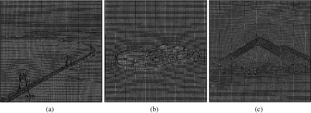 Figure 3 for The Generation and Application of Medical Image Grid Based on Differential Geometric Features