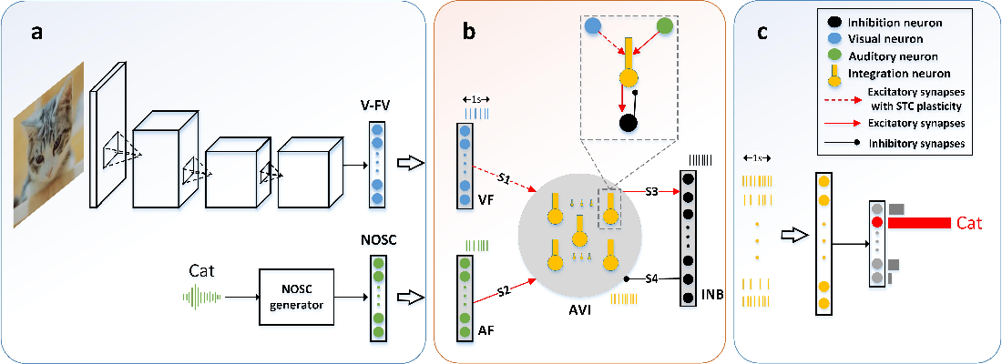 Figure 1 for A biological plausible audio-visual integration model for continual lifelong learning