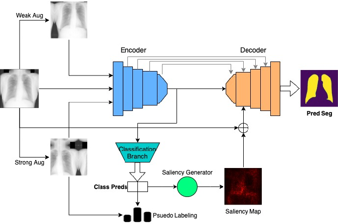 Figure 1 for MultiMix: Sparingly Supervised, Extreme Multitask Learning From Medical Images