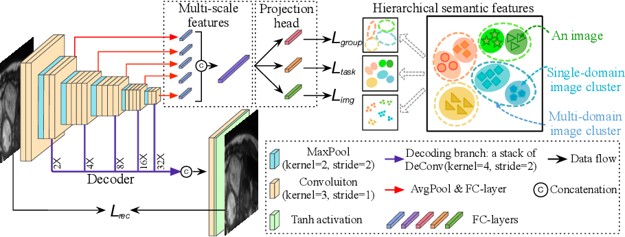 Figure 4 for Hierarchical Self-Supervised Learning for Medical Image Segmentation Based on Multi-Domain Data Aggregation