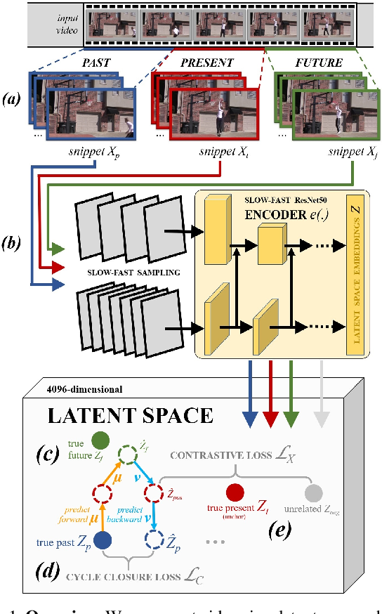 Figure 1 for Back to the Future: Cycle Encoding Prediction for Self-supervised Contrastive Video Representation Learning