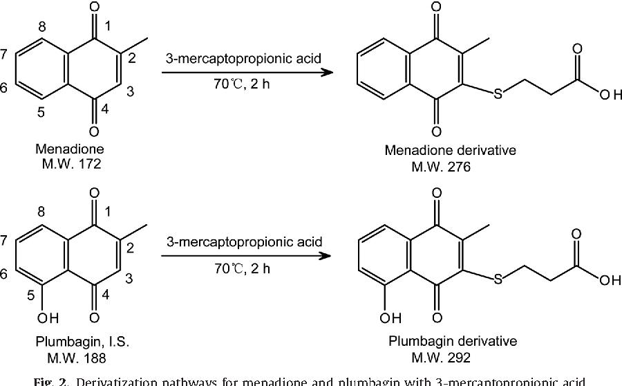 Menadiol Sodium Phosphate Semantic Scholar