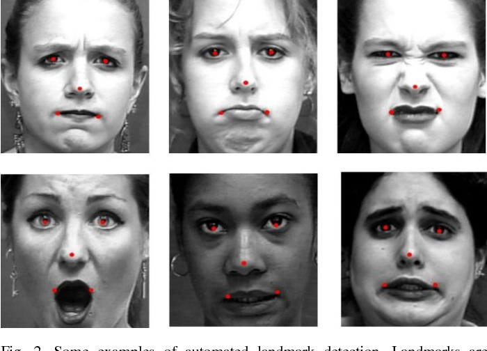 Figure 2 for Robust Facial Expression Classification Using Shape and Appearance Features