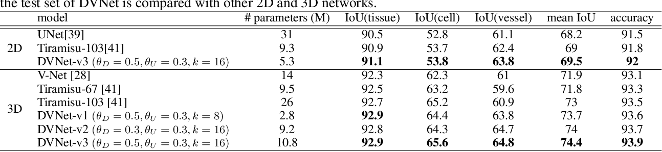 Figure 4 for DVNet: A Memory-Efficient Three-Dimensional CNN for Large-Scale Neurovascular Reconstruction